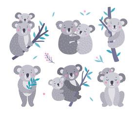 Cute koala bears vector collection. Australian animals wildlife illustration set. Koala family, mother and baby on white background