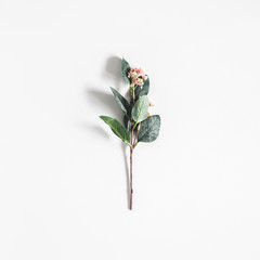 Flowers composition. Flower on pastel gray background. Flat lay, top view
