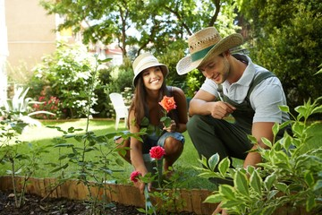 Young couple gardening Fotomurales