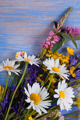 Wild flowers on blue wooden deck background (chamomile lupine dandelions thyme mint bells rape)