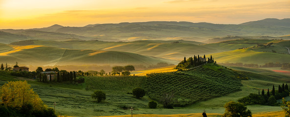 Foto op Canvas Wijngaard Tuscany - Landscape panorama, hills and meadow, Toscana - Italy