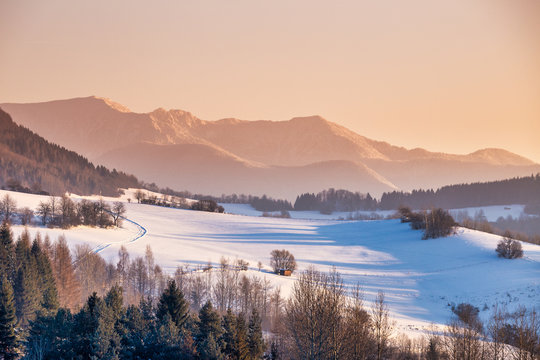 Snowy winter landscape with mountain range in the background at morning light. The Mala Fatra national park in Slovakia, Europe.