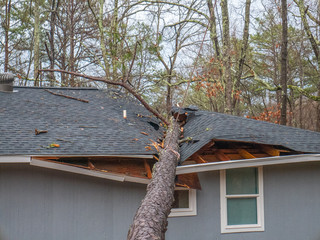 Storm damage tree on roof in Saks near Anniston, Alabama, January 11, 2020