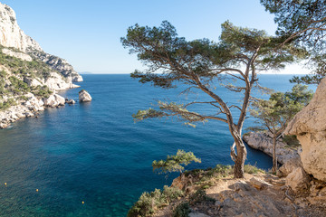 Calanques national park with view on Sujiton - Mediterranean sea landscape