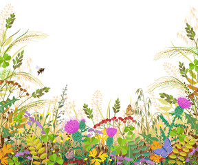 Obraz Colorful Frame with Autumn Meadow Plants and Insects - fototapety do salonu