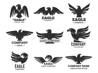 Eagle or falcon black silhouettes for branding