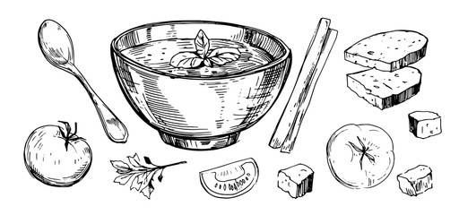Vegetable soup. Hand drawn illustration converted to vector