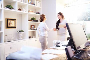 Interior designer and client handshaking in office