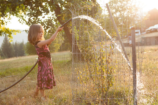 Girl in dress watering tree with hose in sunny, summer yard