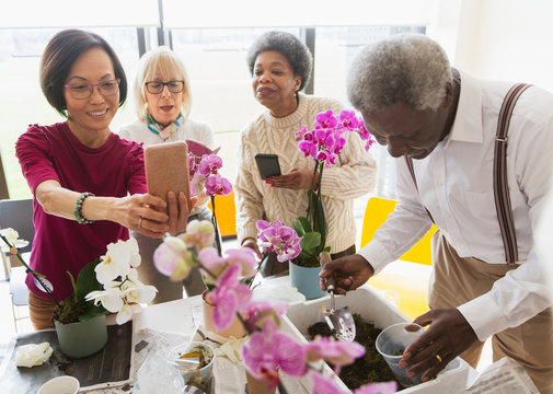 Active seniors enjoying flower arranging class
