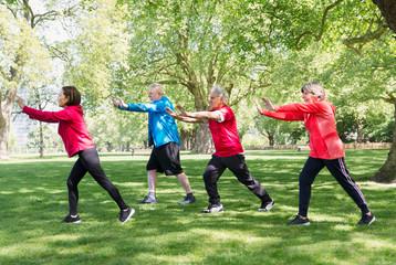 Active senior friends practicing tai chi in park