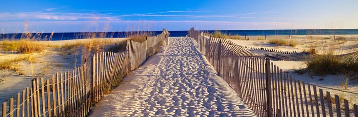 Pathway and sea oats on beach at Santa Rosa Island near Pensacola, Florida Fototapete