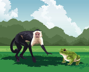monkey and frog tropical fauna and flora landscape