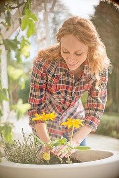 Woman planting flowers in flowerpot