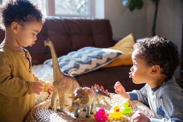 Toddler brothers playing with dinosaur and rubber duck toys