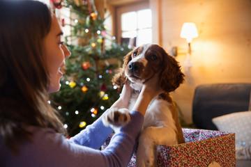 Teenage girl petting cute dog in Christmas gift box