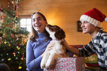 Portrait happy brother and sister with dog in Christmas gift box