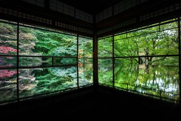 春 京都 風景 緑