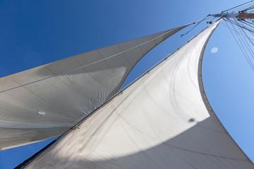 Sailboat sails blowing in breeze below sunny blue sky