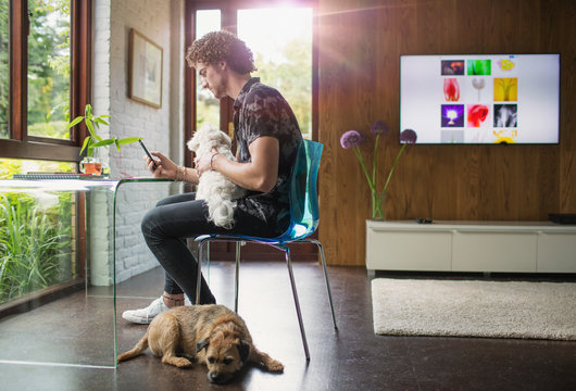 Young man with dogs using smart phone in home office