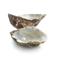 Pacific oyster shell and pearl