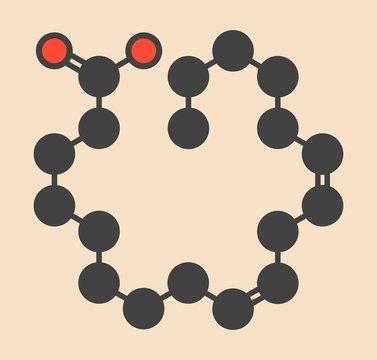 Linoleic acid molecule