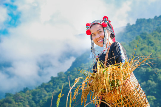 A beautiful farmer girl with straw in rice fields in northern Thailand.