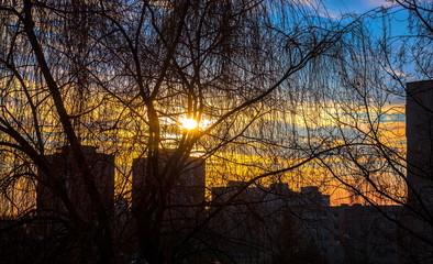 Morning in Vilnius
