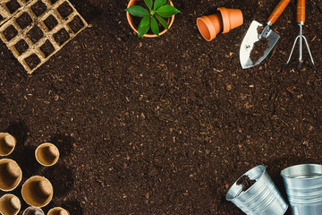 Gardening tools on soil texture background top view.