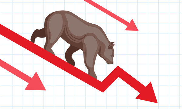 stock market fall with bear vector