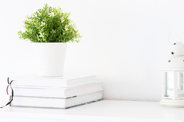 Green pant pot , white lantern and book  on shelf or desk at interior white wall.