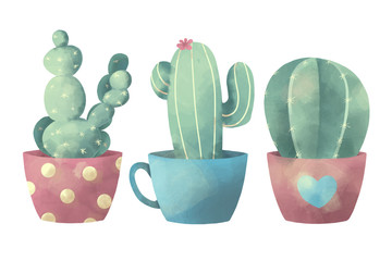 Watercolor illustration of different exotic cactus plants in flower pots on white background