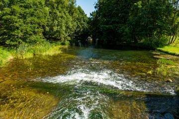 Kaszuby rzeka drzewa