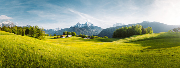 Spoed Fotobehang Landschap Idyllic mountain landscape in the Alps with blooming meadows in springtime