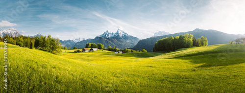 Wall mural Idyllic mountain landscape in the Alps with blooming meadows in springtime