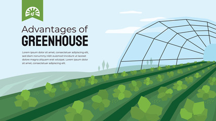 Vector illustration of advantage of greenhouse. Polyhouse cultivation in agriculture. Design template for horticulture or agronomy. Template with greenhouse farming for banner, poster, flyer, layout.