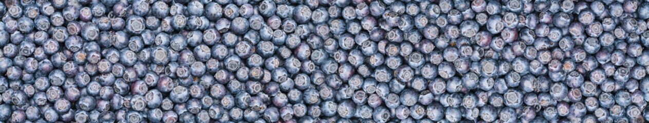 Fresh blueberries background or backdrop with copyspace for your individual text. Vegan and...