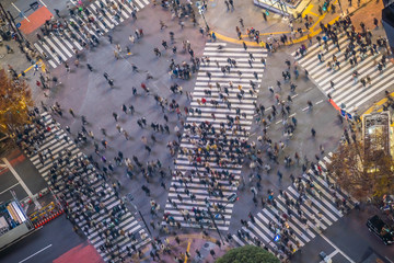 Fotomurales - Shibuya Crossing from top view at night in Tokyo