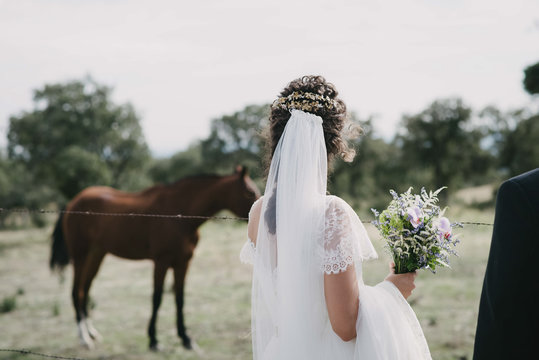 Back view of unrecognizable female in white dress carrying bouquet and admiring grazing horses during wedding in countryside