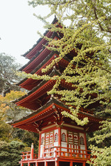 Red ornamental Japanese pagoda surrounded by green trees in park in San Francisco
