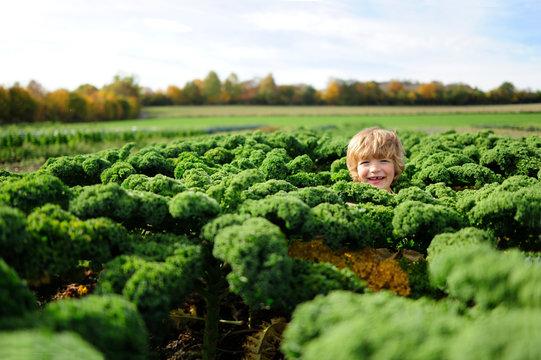 Boy in a kali field