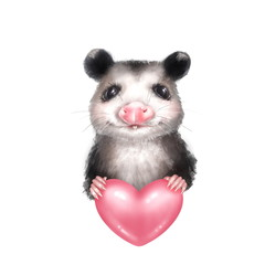 Portrait of Opossum with heart. Isolated on white