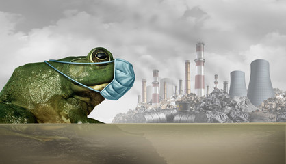 Animals And Pollution