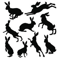 Hare silhouette set. Vector illustration