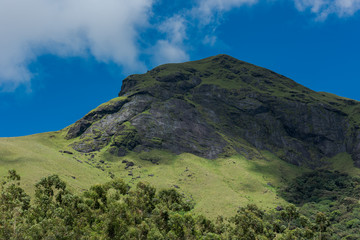 Scenic view of mountain summit in Eravikulam National Park  in Kerala, South India on sunny day
