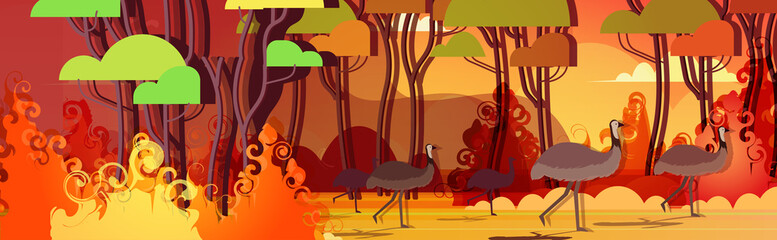 ostrich or emu running from forest fires in australia animals dying in wildfire bushfire burning trees natural disaster concept intense orange flames horizontal vector illustration