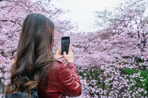 Wall mural Woman take a photo at Cherry blossom along the Meguro river in Tokyo, Japan.