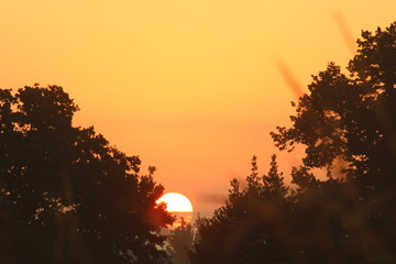 Papiers peints Melon sunset in mountains