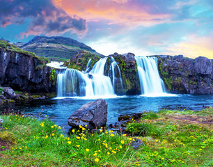 Poster de jardin Cascades Beautiful terrific landscape with yellow flowers and big stone near waterfall Kirkjufell in Iceland at sunset. Exotic countries. Amazing places. Popular tourist atraction.