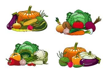 Vegetables, organic healthy farm food, carrot, green onion, tomato and beet. Vector vegetarian pumpkin, cucumber, broccoli and zucchini squash, vegan salad beetroot, radish, corn and cauliflower